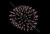 4279<br /> Michigan Fireworks