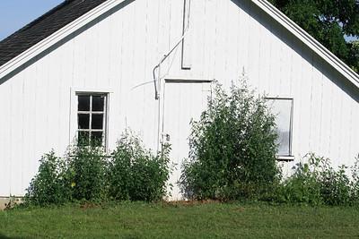 2014 Farm pix