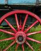 wagonwheel5574