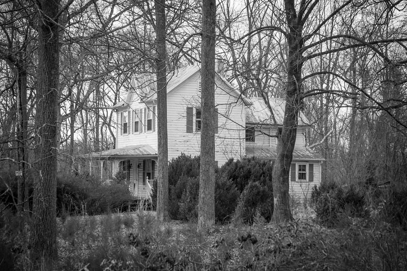 abandhouseinwoods2299