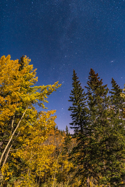 Cassiopeia and Perseus Above Aspens