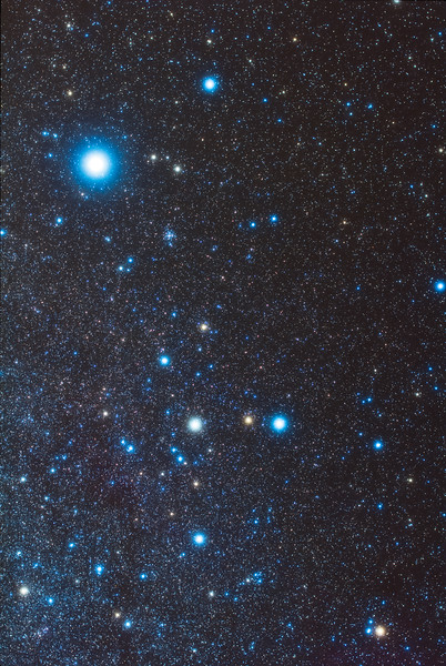 Canis Major (50mm 60Da)