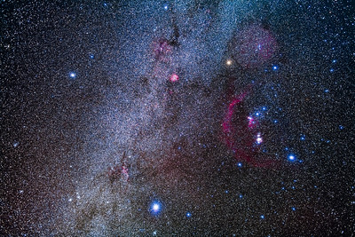 Orion and His Dog Stars