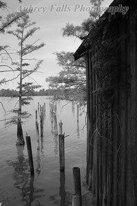 Fishin' House