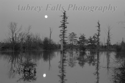 Brooks Bayou Moonrise