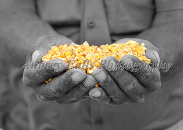Rickie's Corn colored B& W