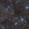 Lynds Bright Nebula 603, Lynds Dark Nebula 1295 & 1296 and Tokyo Gakugei University catalogue H807 & H809