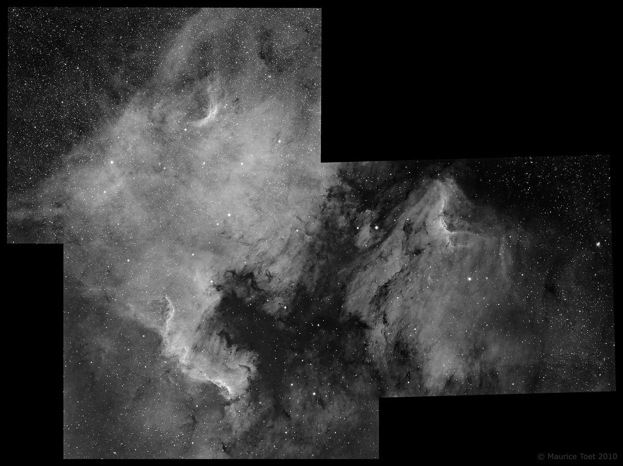 NGC 7000 & IC 5070, North America and Pelican Nebula