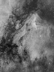 IC 5070, Pelican Nebula