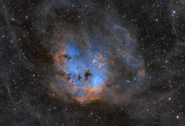 IC 410, Tadpoles Nebula