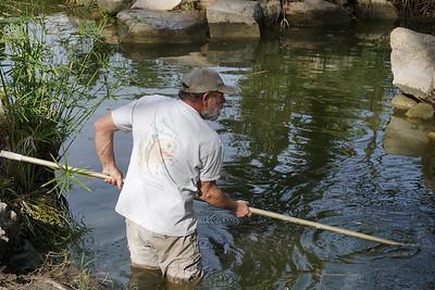 Deer Park - Koi Pond Cleaning