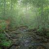 Appalachian Morning Fog