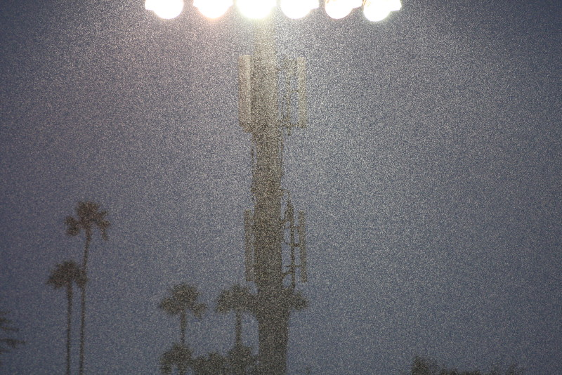 The rain fell heavily throughout the game.