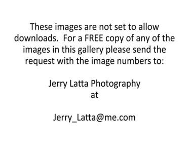 JLP Cover Release JLP