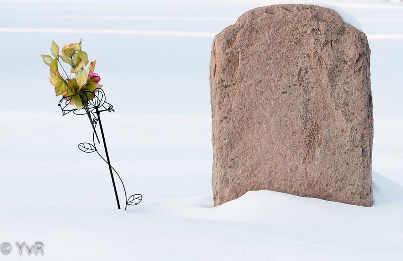 Yves-Roy-cimetière-2
