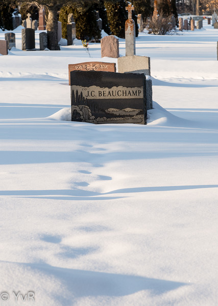 Yves-Roy-cimetière-1