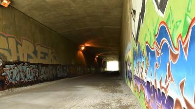 joanne picard_tunel jpg