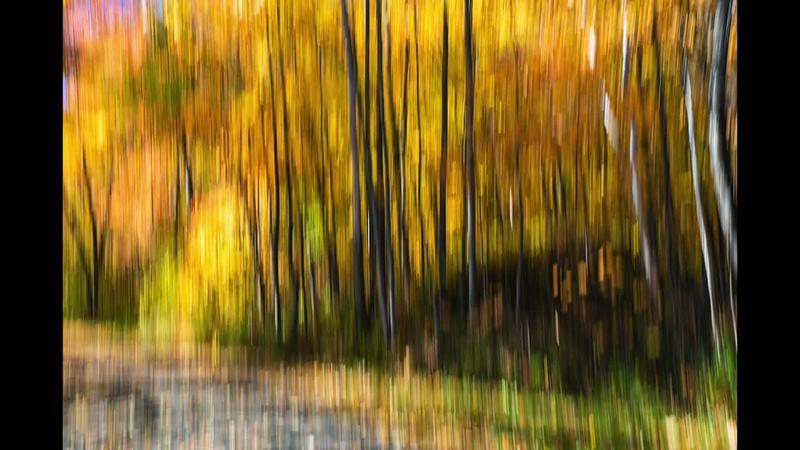 Robert Lapointe Comme une peinture