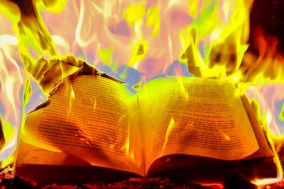 le livre des flammes 2 gilbert pare