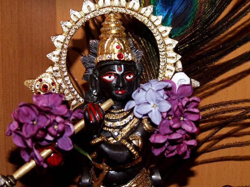 Krishna-Diety-of-Bhaktin-Katya (1)