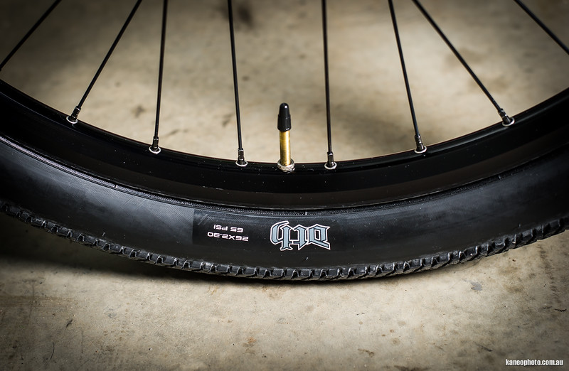 Maxxis DTH 2.3 rubber is a great all rounder and look the goods too.