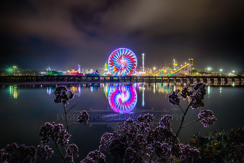 Opening Night At The San Diego County Fair 2014