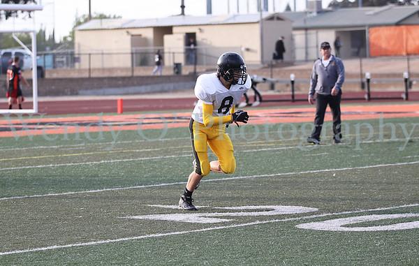 Freshman vs Roseville 2012
