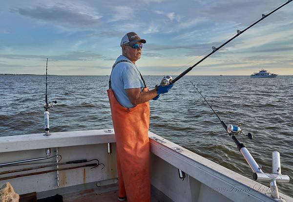 Delaware Bay 2019-05