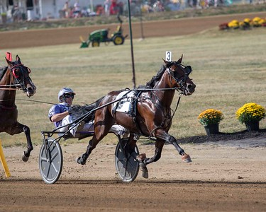 Big Box Hanover, Action Uncle