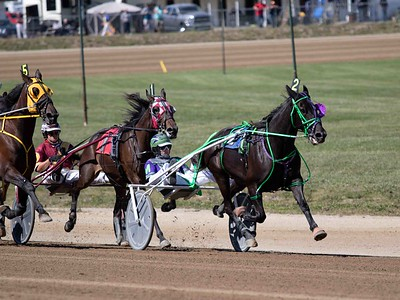 Murmur Hanover, Dont Forget Muscle, Star Chip