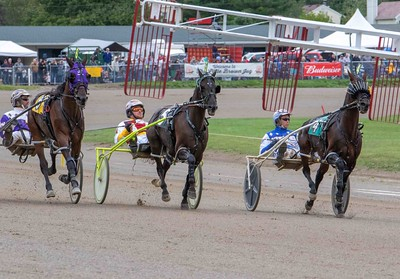No Whistle Blower, Little Engine As, Maddox Hanover