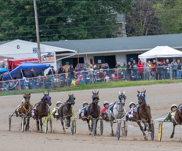 Robin's Art, No Whistle Blower, Little Engine As, Maddox Hanover, Hilltop Image, Whydontukissthis