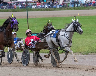 No Whistle Blower, Maddox Hanover, Hilltop Image