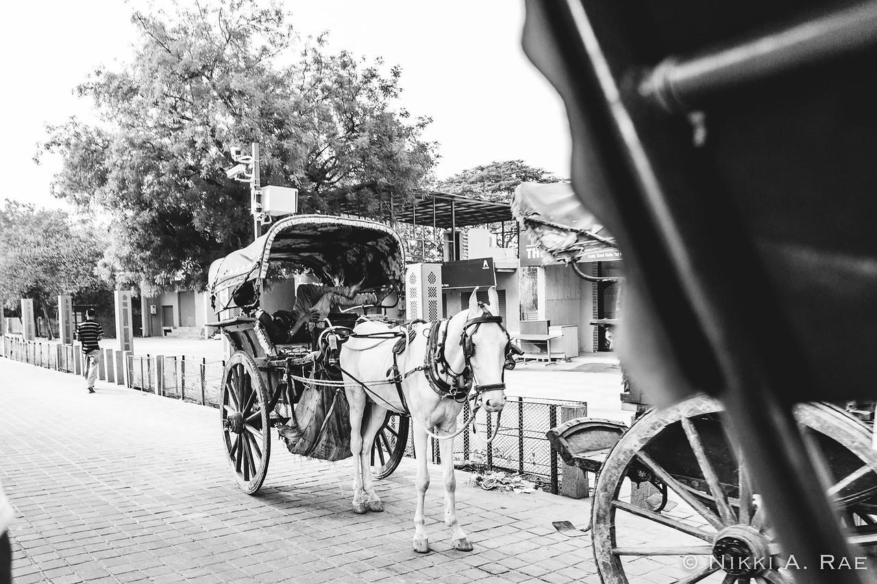 Agra Intrepid 05 20 2017-54