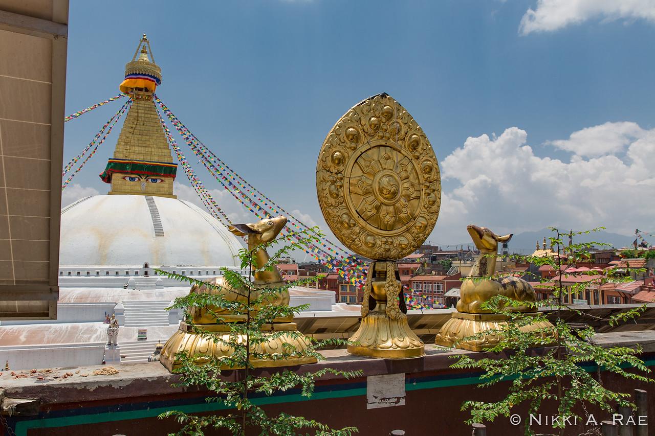 Kathmandu 06 01 2017-34