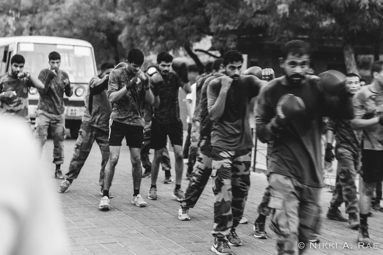 Agra Intrepid 05 20 2017-44