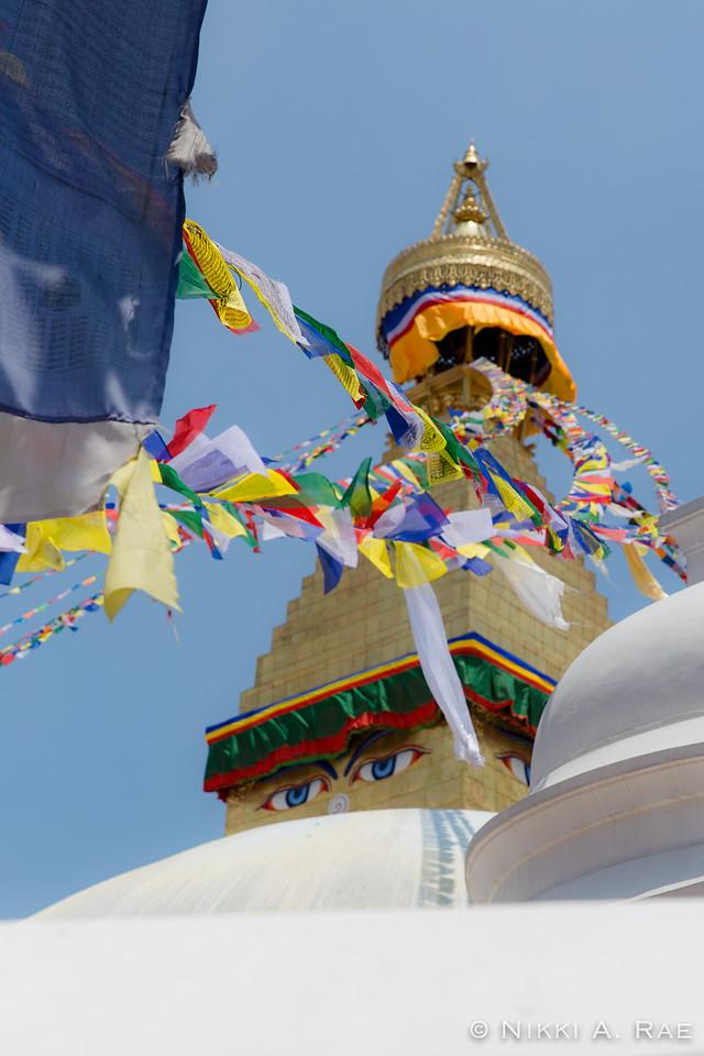 Kathmandu 06 01 2017-30