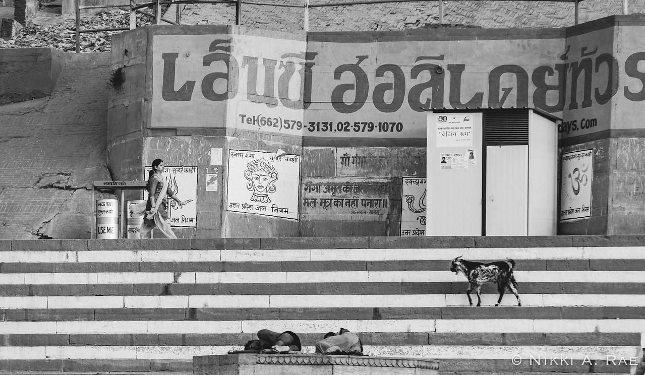 Varanasi Intrepid May 2017-123