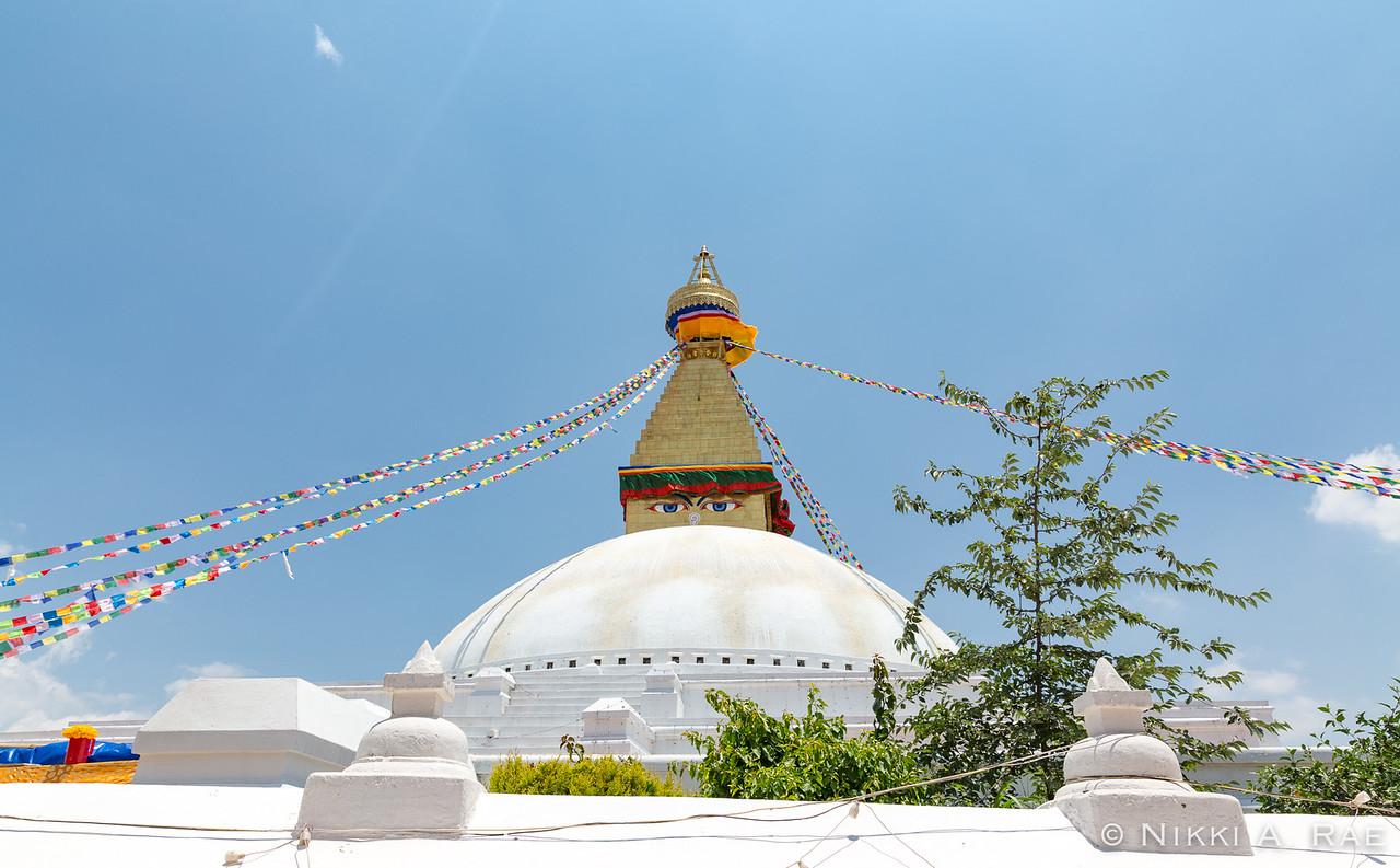 Kathmandu 06 01 2017-31