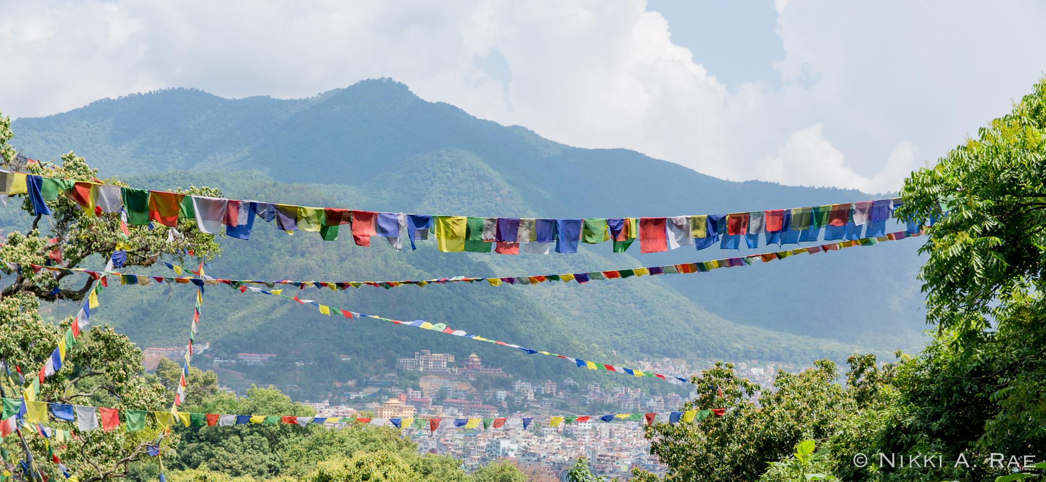 Kathmandu 06 01 2017-15