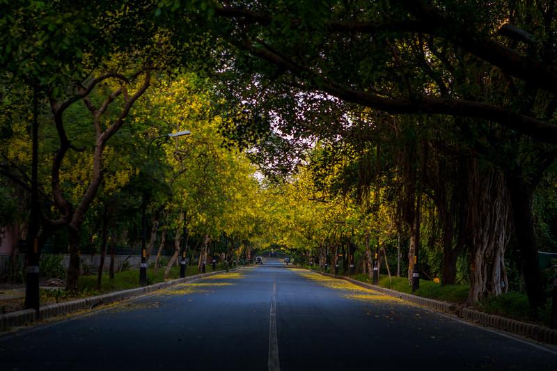 Amrita Shergill Road, New Delhi, India