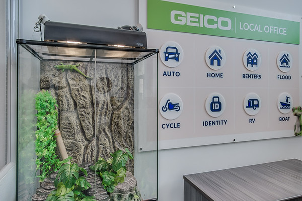Palermo_Geico_Office-2828