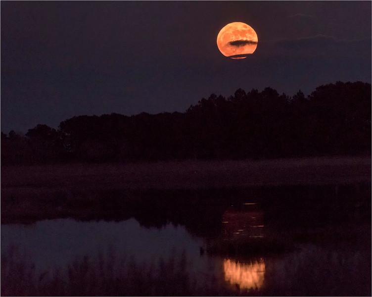 Rising Supermoon, Black Duck Pond, Chincoteague NWR