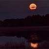 Rising Supermoon, Black Duck Pond, Chincoteague NWR