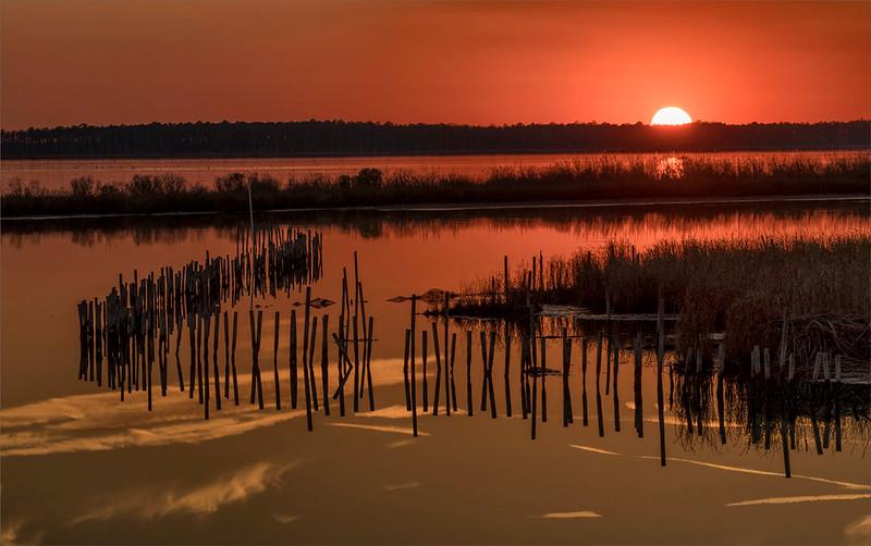 Sunset Blackwater NWR