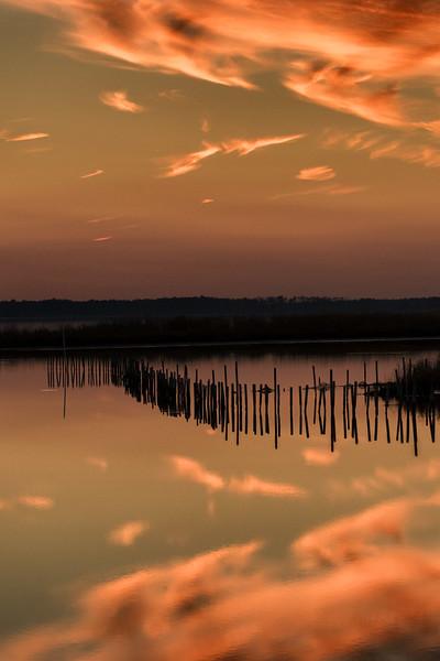 Sunset,  Blackwater NWR