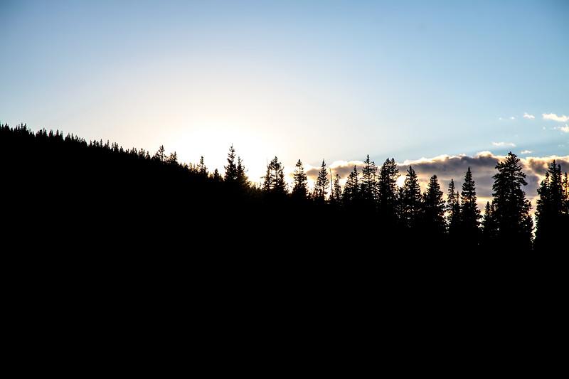 Pine Ridge Sunset NL201608