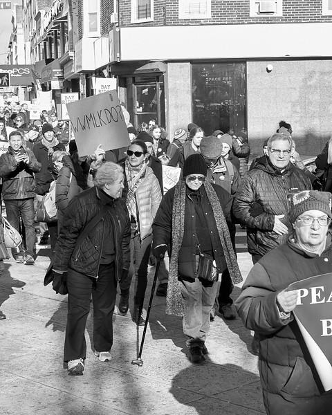 Demo against hate Bay Ridge Jan 2017 _DSF6254