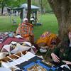 2008 09 Woldumar Nature Days 26