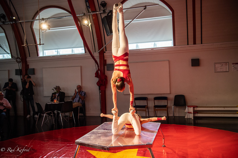 2019 blev sæsonen, hvor der blev indført girlpower i dansk cirkus
